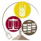 BME – Gabonatudományi és Élelmiszerminőségi Kutatócsoport